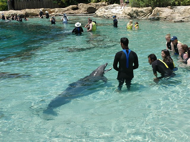 Etats Unis Orlando Seaworld Adventure Parks Www